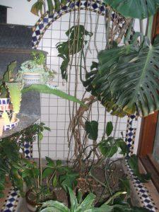 mozaika venkovsky dum 18
